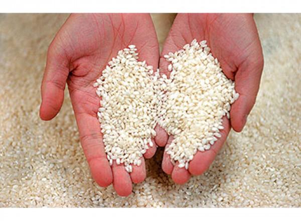 La Campana 1 kg | Arroz Bomba / Paella rijst hand met rijst